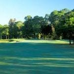 Lansbrook Golf Course in Palm Harbor